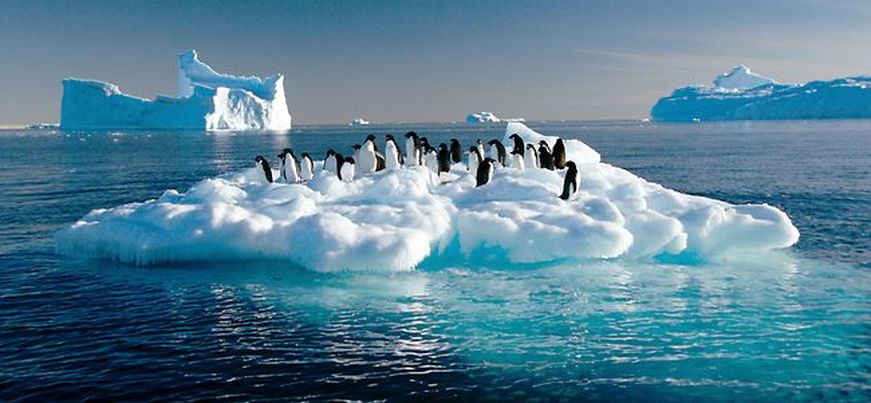 The Antarctic Ocean