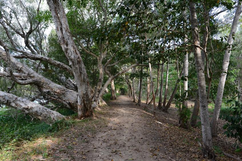 Booroona Trail