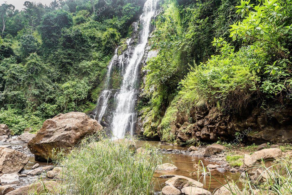 Kilimanjaro Waterfalls Tours