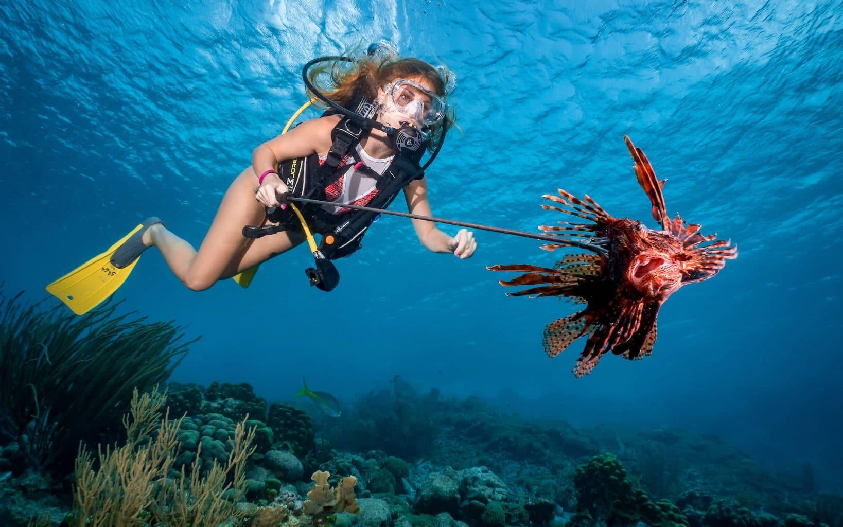 Scuba Diving Townsville Australia