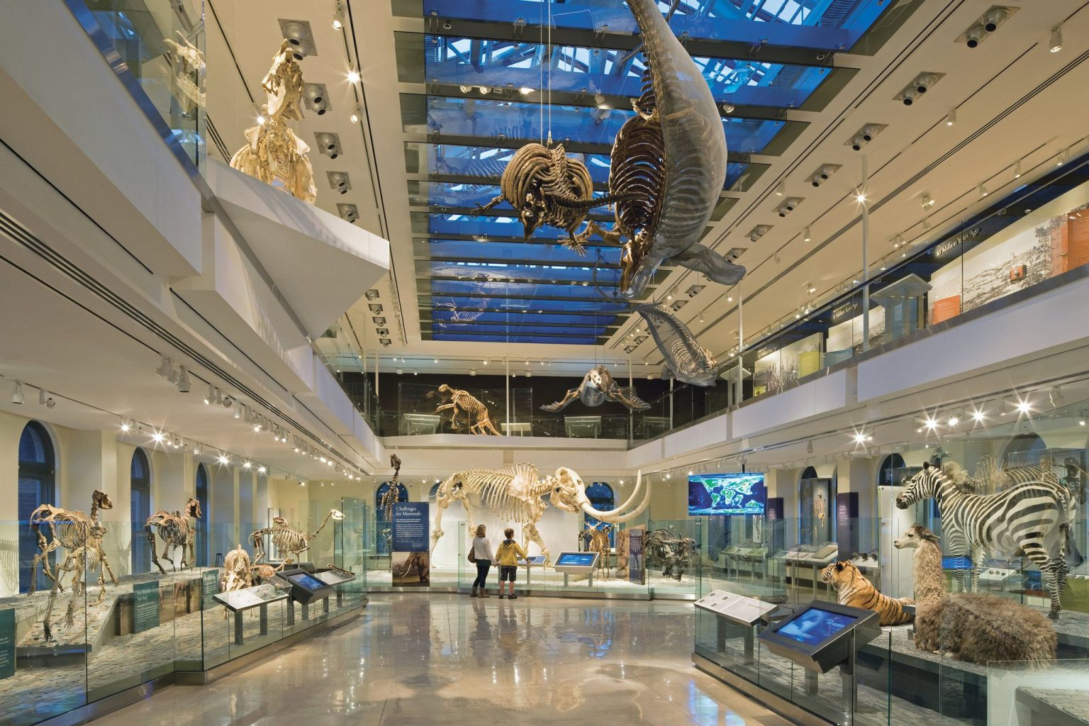 Museum of Natural History in Cleveland