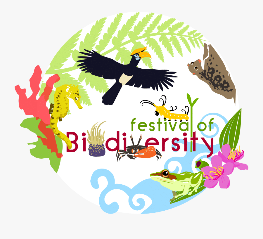 brief representation of biodiversity
