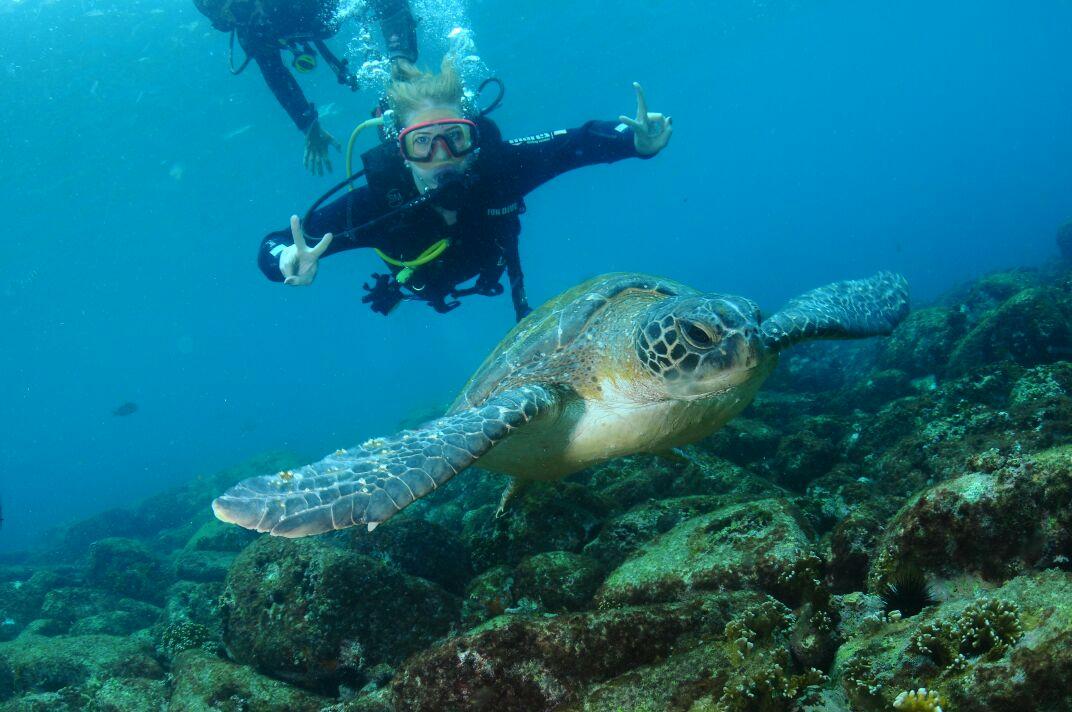 scuba diving Rio de Janeiro