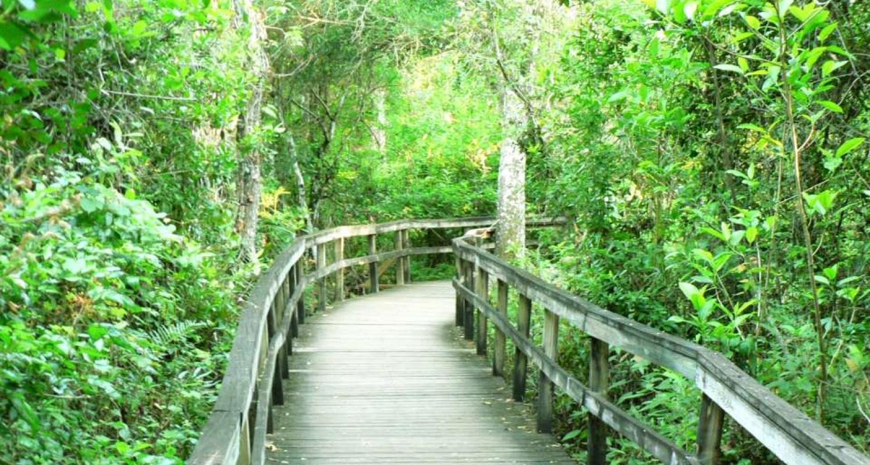 the Boardwalk at Everglades National Park